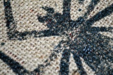 Burlap Spider Closeup