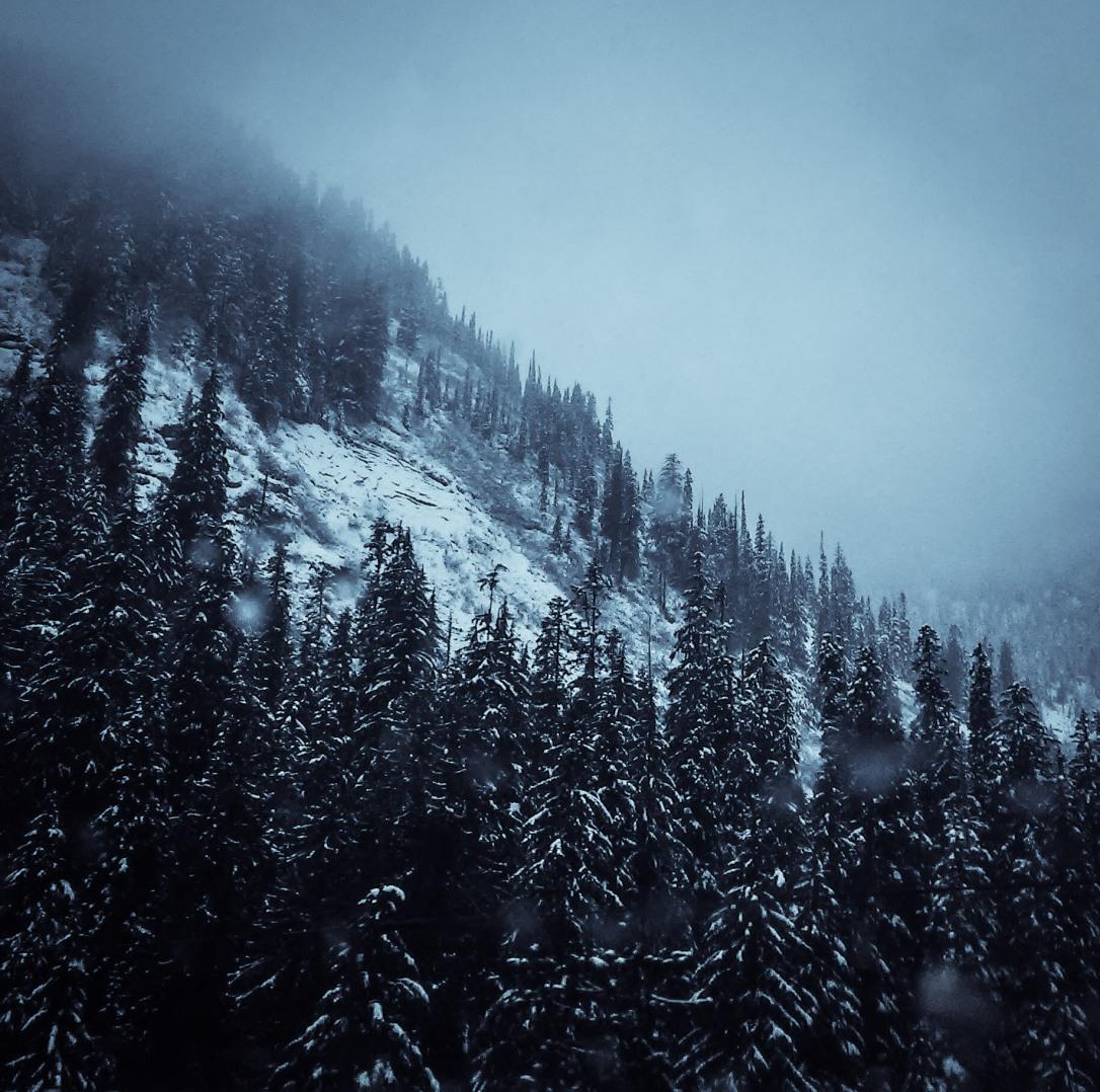 Summit @ Snoqualmie Pass